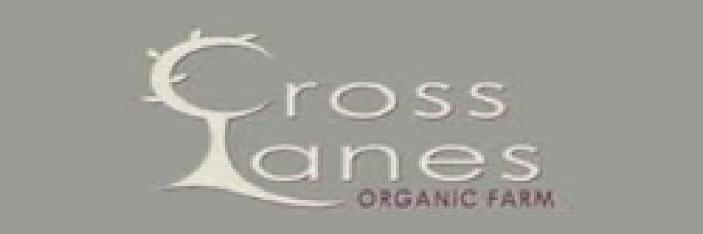 Cross Lanes Logo